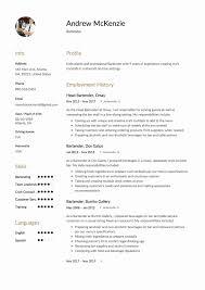 Job Description Of A Bartender For Resume Resume Format For Bartender Best Of 100 Elegant Bartender Resume 92