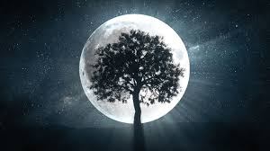 What Are Full Moon Rituals? - How to Create a Full Moon Ritual to Improve  Your Year