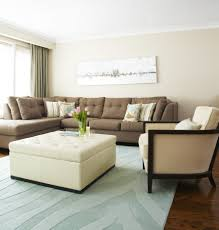magnificent apartment living room decorating ideas on a budget