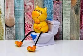 Der toilettensitz ist rein nur eine auflage, sprich verkleinerung, die auf die toilettenbrille gelegt wird. Kinder Wc Sitz Test Empfehlungen 12 20 Einrichtungsradar