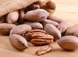 pecan nut. Exellent Pecan To Maximise Pecan Nut Production It Is Crucial To Prepare The Soil  Properly Intended Pecan Nut