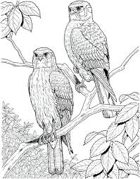 Hard Coloring Pages To Print Hard Coloring Pages For Adults Free