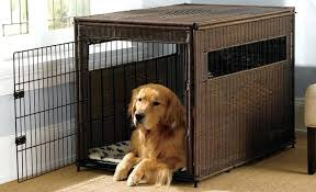 indoor outdoor dog kennel best crates top portable and options building
