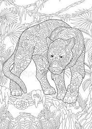 Kleurplaat Luipaard