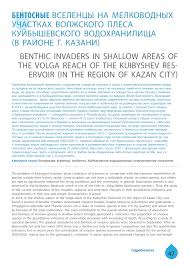 (PDF) BENTHIC INVADERS IN SHALLOW AREAS OF THE VOLGA ...