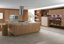 fanciful contemporary wood cabinets ideas modern wood kitchen cabinets modern light wood kitchen cabinets pictures design