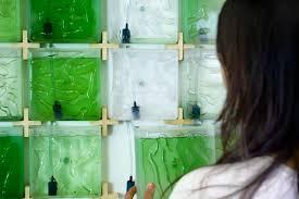 Algae Farm Design The Coral Indoor Micro Algae Farm Design Milk