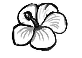 Small Picture Best 25 Easy drawings of flowers ideas only on Pinterest Easy