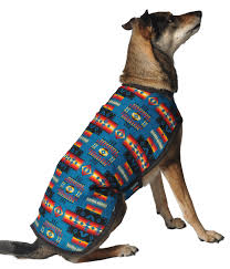 Turquoise Southwest Dog Blanket Coat