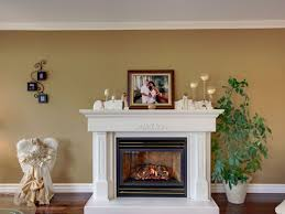 decorative fireplace electric inserts surrounds ideas size insert dimplex intrepid wood stove gas fire installation floating