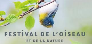 festival de l oiseau