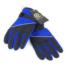 C9 Champion Boys Waterproof Winter Ski Gloves Nwt