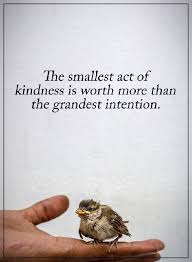 Quotes About Kindness Delectable Kindness Quotes Why Kindness Worth More Than Grandest Intention