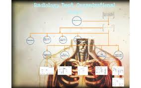 Radiology Dept Organizational Chart By Ayumi Gomez On Prezi