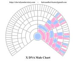 X Dna Its A Girl Thing And We Included The Boys