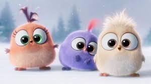 Cute The Angry Birds Movie 4K ...