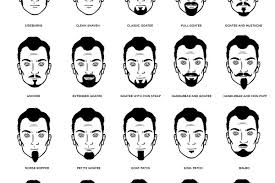 Mustache Styles Chart Daily Infographics Page 3