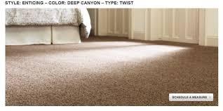 Home Depot Platinum Plus Carpet