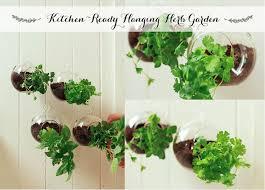 Kitchen Ready Hanging Herb Garden Cozy Yard Pinterest