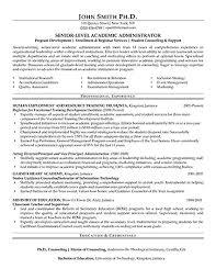 Big Four Resume Sample