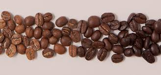 In 1930, dallmayr started to sell coffee, and the main store in munich purchased electric coffee roasting equipment. Dallmayr Coffee Perfectly Refined Premium Quality