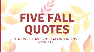 Fall Quotes Beauteous Five Fall Quotes You'll Fall In Love With Geez Gwen