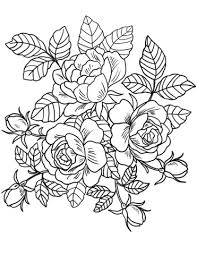 roses flowers coloring page free printable coloring pages coloring book pages flowers colouring pages