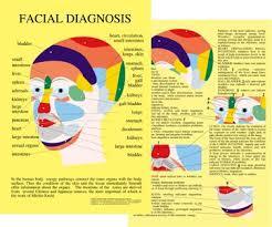 Cranial Reflexology Chart Catalogue Baarle Com Uk