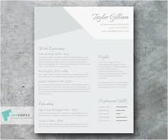 Smart Resume Builder Mesmerizing Smart Resume Builder 44 44 Best 44 S Creative Resume Cv
