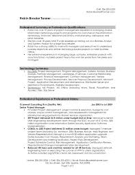Sample Of Resume Executive Summary Unique Template Example For It