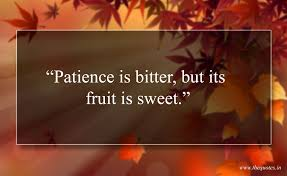 Patience Is Bitter But Its Fruit Is Sweet Quotes