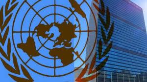 Image result for Conselho de Segurança pede que líderes cumpram acordo de paz