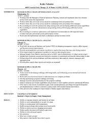 Resume Samples For Supply Chain Management Magdalene