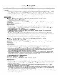 Templates Chief Financial Officer Sample Job Description