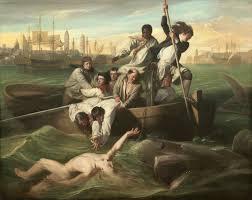 john singleton copley watson and the shark original version 1778