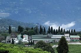 Temi Tea Factory Picture Of Cherry Resort Temi Tripadvisor