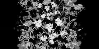 無料で使える30個のフォトショップ用花柄ブラシまとめ Photoshopvip