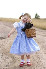 27 diy wizard of oz costumes for dorothy scarecrow and the whole group