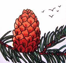 R Sultat De Recherche D Images Pour Pive De Pin Dessin Kids Diy Coloriage A Dessiner Pomme De Pin L