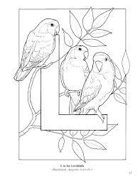 Small Picture Bird Colotring Pages