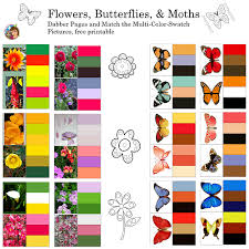 How to create and save custom color swatches in photoshopin today's tutorial we're going to look at creating and using custom color schemes in photoshop. Matching Color Palettes For Flowers And Butterflies Wise Owl Factory