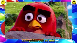 phim Angry birds hài hước nhất - phim Angry birds hay nhất thế giới -  YouTube