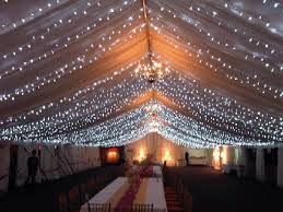 fairy lighting. outside or in tents as a sparkly fairy light roof lighting