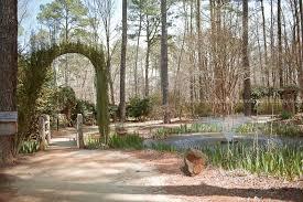 cape fear botanical gardens sre photography fayetteville nc wedding photography