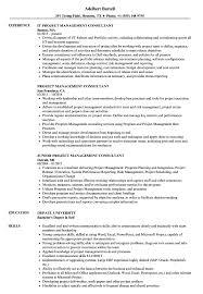Project Management Consultant Resume Samples Velvet Jobs