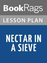 nectar in a sieve essay helper by shmoop samuel taylor coleridge nectar in a sieve lesson plans