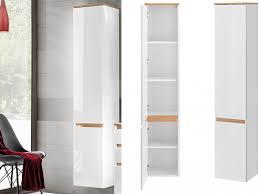 modern wall mounted tall bathroom