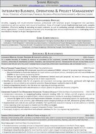 Financial Analyst Resume Sample New Senior Financial Analyst Resume