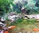 imagem de Cachoeiras de Macacu Rio de Janeiro n-10