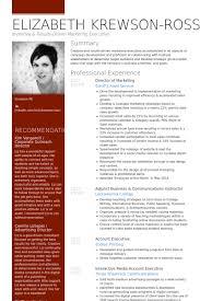 Director Of Marketing Resume Samples Visualcv Resume Samples Database